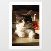 Sink Kitten Art Print