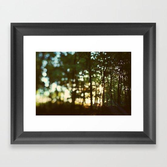 In Secret Framed Art Print