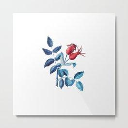 Watercolor Rose Hips Metal Print