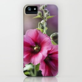 Raspberry Sorbet iPhone Case