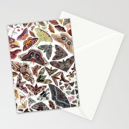 Moths of North America Stationery Cards