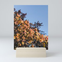 Sakura blossoms Mini Art Print