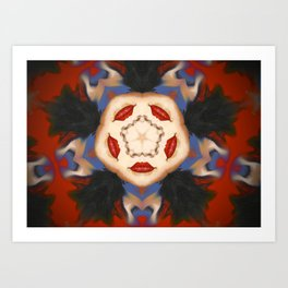 Kaleidoscope C7 Art Print