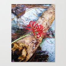 Bump on a Log Canvas Print