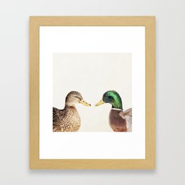 Two Ducks Framed Art Print