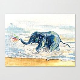 Spraying Rainbows Canvas Print