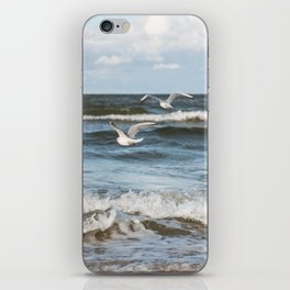 Fly iPhone Skin