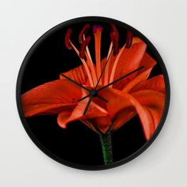 Single Red Lily On Black Wall Clock