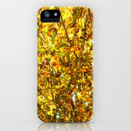 Autumn leaves pattern iPhone Case
