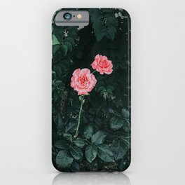 Vintage Pink Roses iPhone Case