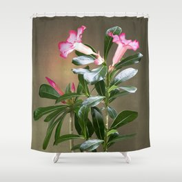 Spade's Desert Rose Shower Curtain