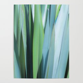 blue and green leaves Poster