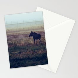 Cow and Calf Moose in Morning Mist, Delta Junction Alaska Stationery Cards