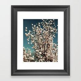 Winter Blossoms Framed Art Print