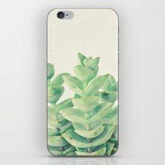 Necklace Vine iPhone & iPod Skin