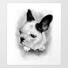 Bijou Art Print
