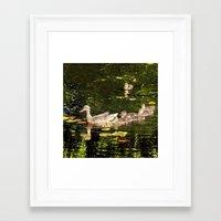 ducks Framed Art Prints featuring Ducks by LudaNayvelt