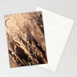 Prisim Stationery Cards