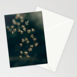 Starlights Stationery Cards