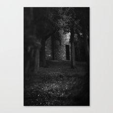 Thru the woods Canvas Print
