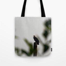 Eagle at Sunrise Tote Bag