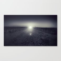 Looking for.... Canvas Print