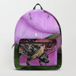 Rose of Sharon Bee covered in Pollen Purple Pink Photo Backpack