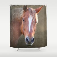 horse Shower Curtains featuring horse  by mark ashkenazi