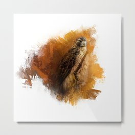 Expressions Red Tailed Hawk Metal Print
