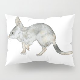 Investigative Bilby Pillow Sham