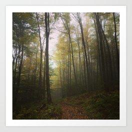 Canaan Valley, Autumn Art Print