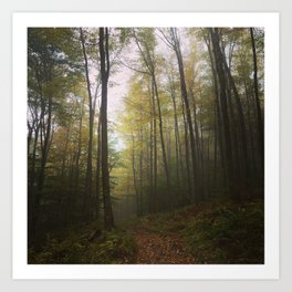 Canaan Valley, Autumn Art Print