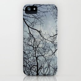 Nature and landscape 3 iPhone Case