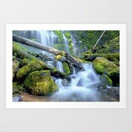 Waterfall - Proxy Falls Art Print