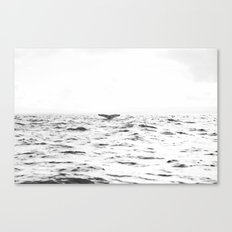 WHITE - SEA - WAVES - WATER - WHALE - NATURE - ANIMAL - PHOTOGRAPHY Canvas Print
