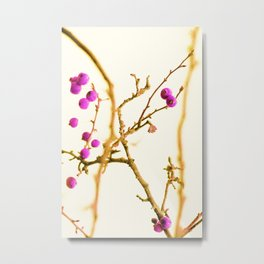 Soft pink berrys Metal Print