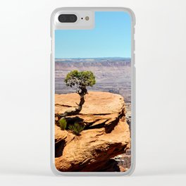 Solitary Juniper Tree, Dead Horse State Park Clear iPhone Case