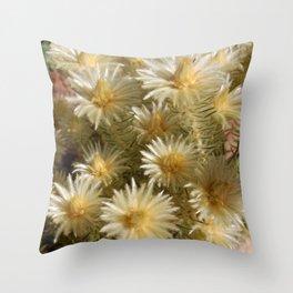 Fynbos Treasures Throw Pillow