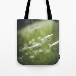 Wild carrot flowers Tote Bag