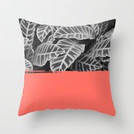 Calathea living coral Throw Pillow