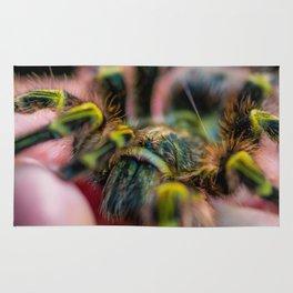 Tarantula bite Rug