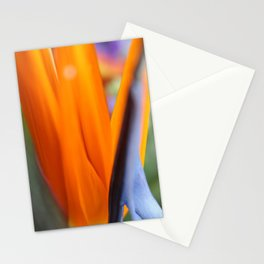 Birds of Paradise Stationery Cards