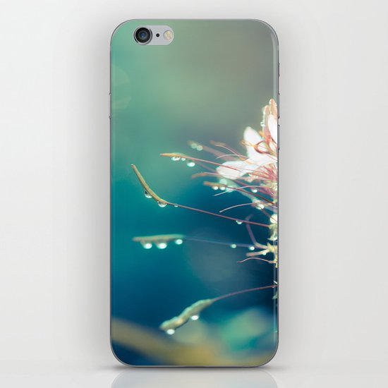 Seeking iPhone & iPod Skin
