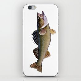 walleye iPhone Skin