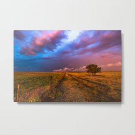 Far and Away - Lone Tree Under Colorful Sky in Oklahoma Panhandle Metal Print
