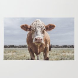Animal Photography | Cow Portrait Photography | Farm animals Rug