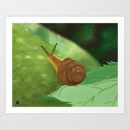 Traveling Snail Art Print