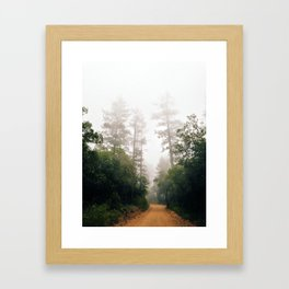 Foggy Trees Framed Art Print