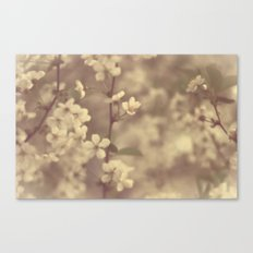 There was a Spring Canvas Print