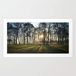 The Long Shadows Art Print